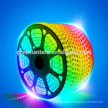 RGB LED Strip Light 5050 IP68 SMD Flexible LED Ribbon Decorative Light with IR Remote Controller
