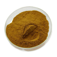Chinese Supplier Lower Blood Pressure Hawthorn Berry Extract/Hawthorn Flavonoids Powder