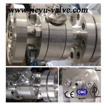 High Pressure Pn250 Stainless Steel F316L Ball Valve