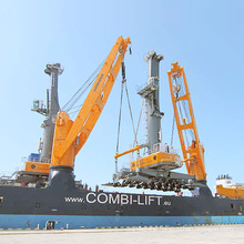 New Feature and High Performance Barge Crane