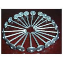 Gängiger galvanisierter Stahlregenschirm-Nagel