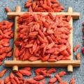 Ningxia spécial grade pairgranular organique séché goji berry