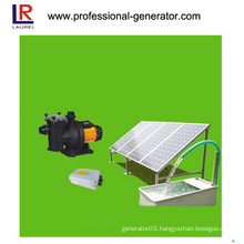 for Swimming Pools DC Solar Water Pump
