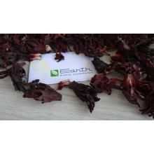 Nigerian Hibiscus Supplier
