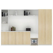 The New Style Office Filing Cabinet Modern Commercial Bookcase (JS-S002)