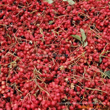 Chinese prickly ash/sichuan pepper