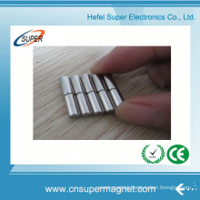 Largest Rare Earth Strong Cylinder Magnet