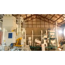mpg 1t/h emery roller rice polisher rice polishing