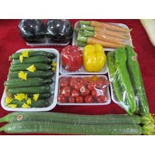 Großhandel benutzerdefinierte Einweg-Fast-Food-Box für den Markt (Kunststoffschale)