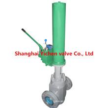 API 6 a hydraulique plate vanne