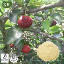 Alto contenido natural de vitamina C 17%, 25% de cereza acerola