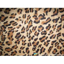 Pantera leopardo impreso el patrón