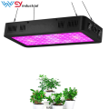 Full Spectrum LED Grow Light mit 2 Dimmern