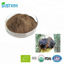 Organic Wholesale Chaga Extract Powder Siberia with FDA