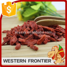 big plump high quality thick sweet free of pollution goji berry