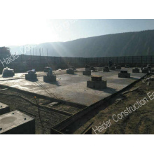 Seismic Isolation System in Foreign Market