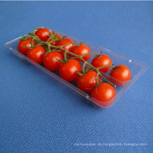PP-Lebensmittelverpackungs-Plastikblasen-Behälter, Wegwerftiefkühlkost- / Fleisch- / Frucht- / Gemüse-Behälter