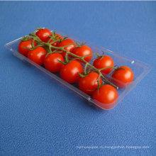 ПП упаковки еды пластичный поднос Волдыря, одноразовые замороженных продуктов/мяса/фруктов/овощей контейнер