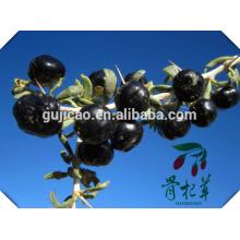 China wholesale organic certificated dried black goji berry