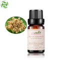 Bulk Essential Oils Set Cnidium Oil Flavor Oil