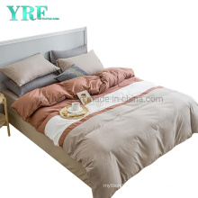 Simple Style Apartment Luxury Multi Color Fashion Style 100% Polyester Bed Sheet Set