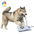 A venda superior de Amazon & não promoveu nenhuma fonte de água exterior do animal de estimação exterior da fonte de água do cão do escape