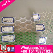 Chicken Mesh /Plastic Flat Net/Plastic Flat Netting Forpolyethylene and Plastic Grid Polypropylene