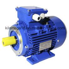 Три фазы электрического двигателя литого железа с ISO