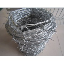 Hot Dipped Galvanized Razor Barbed Wire Per