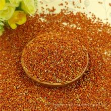 Milho de vassoura vermelha milho para alimentação de aves com bom fabricante