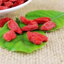 china ningxia Medicinal Orgânica Goji Berry