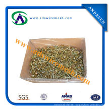Galvanized Umbrella Head Roofing Nails/Twisted Shank Umbrella Head Roofing Nails