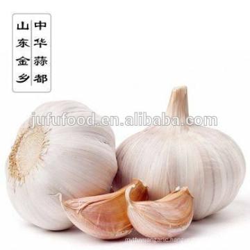 china garlic planter / wholesale garlic