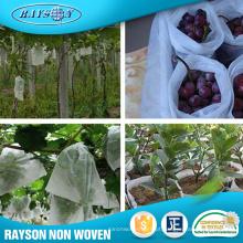 Produtos mais vendidos 2016 Non-Woven Protection Fruit Bag