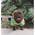 Roupa havaiana do t-shirt do cão