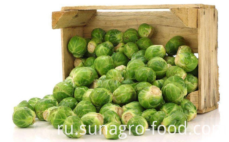 Refrigerated Bag Cabbage