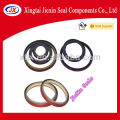 lead oil seals China auto parts
