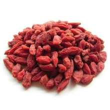 Wholesale séché baies de goji sauvages