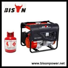 Motor de gás natural doméstico China 1kva 1kw Gerador de gás 1kva para venda
