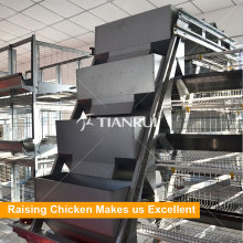 China Automatic Layer Chicken Poultry Feeding System Supplier