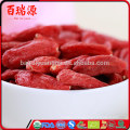 Goji berries and cancer cells john hopkins goji berries and prostate cancer goji berries and breast cancer