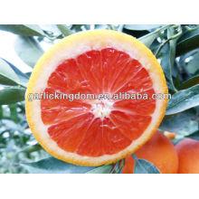 Verkaufe chinesische rote Pulpe Nabel orange
