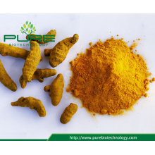 Bulk price dried organic turmeric powder