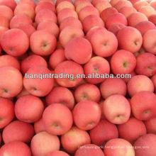 fuji apple price in china