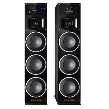 160W RMS Dual Tower Party Lautsprecher