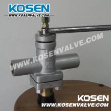 Plug aço forjado Válvula (X13)