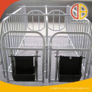 Pig Gestation Barn