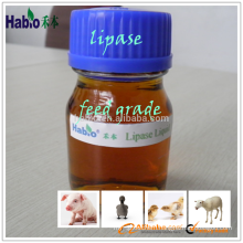 best selling enzyme/lipase
