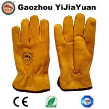Golden Cow Grain Leather Drivers Winter Warm Gants avec doublure en mince