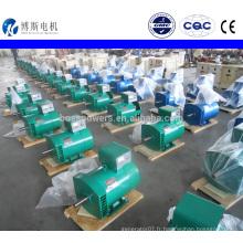 Type de brosse ST / STC 10 kw dynamo